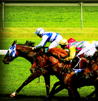 Photograph of horse racing